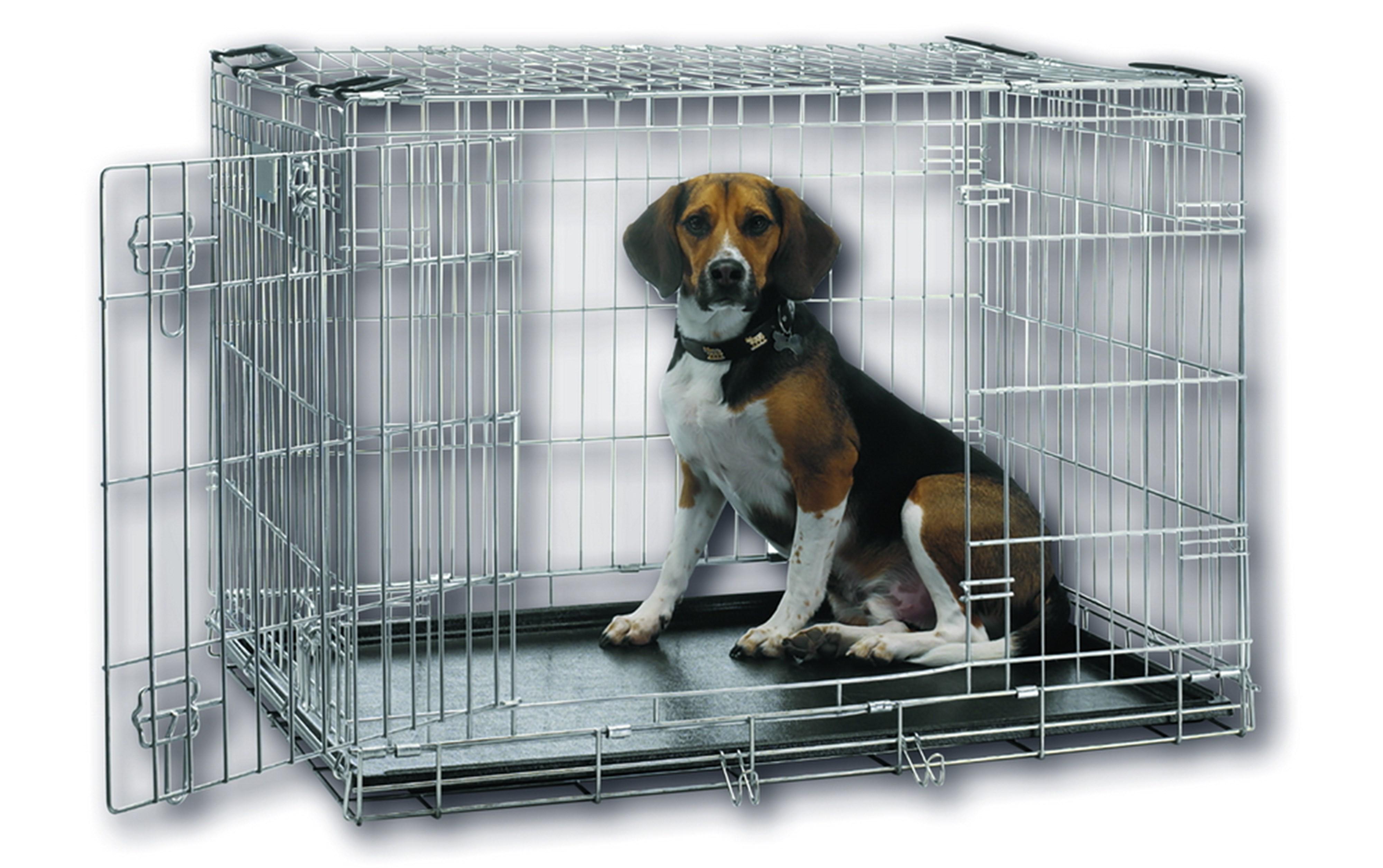 zusammenlegbare hundek fig schweizer hundeshop kauknochen hunde zubeh r schweizer. Black Bedroom Furniture Sets. Home Design Ideas